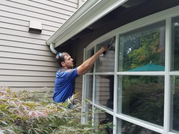 Bellevue window cleaning