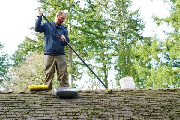 moss removal from roof service