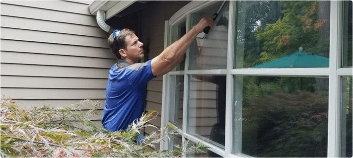 window cleaning bellevue