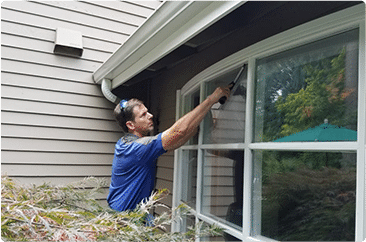 window cleaning services bellevue