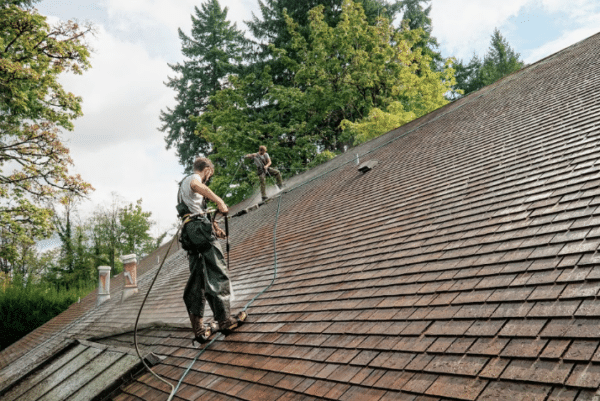Shoreline roof cleaning business