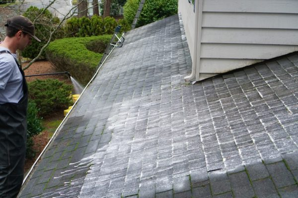 Bellevue Roof Cleaning Services Evergreen Window Cleaning Llc
